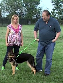 Walk Me Leash Training Video